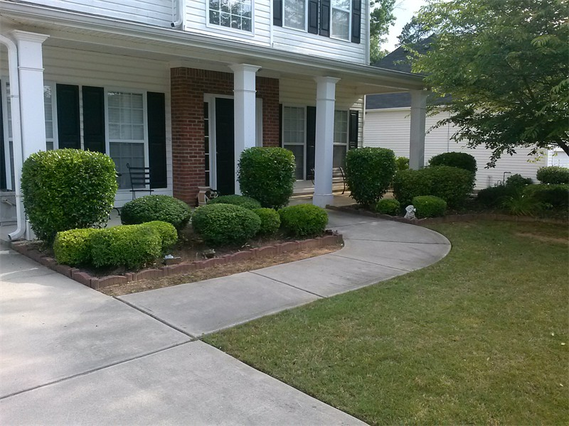 Shrub Trimming Job