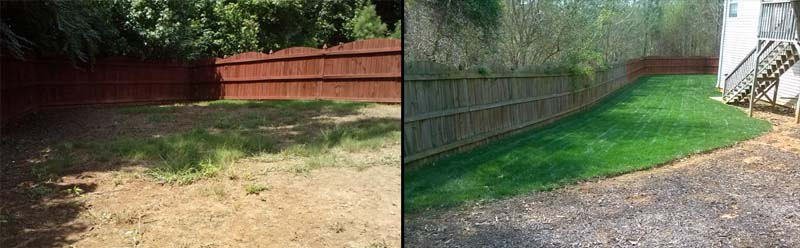 Aeration and Overseeding of your fescue lawn