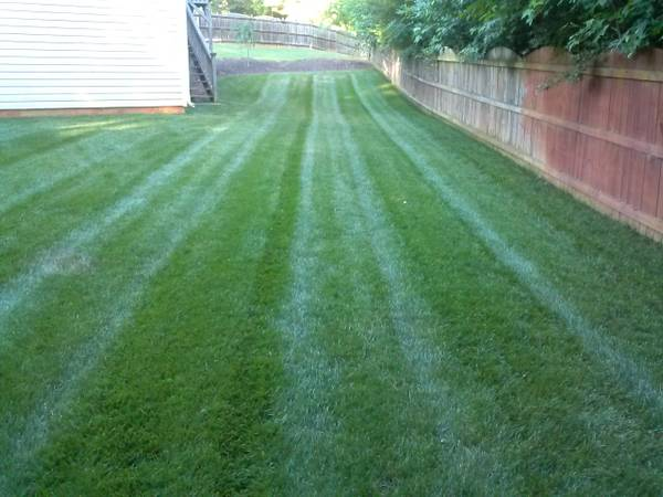 Sharplawns Turf Care - Lawn Care Dallas / Acworth GA